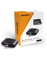 Avermedia AverTV Mobile 310